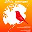 Letnia serenada - Od opery do musicalu