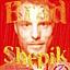 Brad Shepik Trio