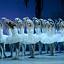 Narodowy Teatr Baletu z Odessy - Jezioro Łabędzie