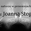 WroFoto - spotkanie o fotografii botanicznej z Joanną Stogą