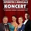 Zaczarowany Świat Operetki i Musicalu