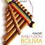 Beto Bolivia