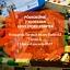 PÓŁKOLONIE Z LEGO STORY STARTER - turnus 4