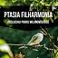 PTASIA FILHARMONIA | warsztaty dźwiękowe