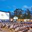 Alicja Bachleda-Curuś powita publiczność Festiwalu Visa Kino Letnie w Zakopanem