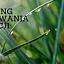 TRENING BUDOWANIA RELACJI - 29.11.2017
