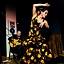 Ethno Jazz Festival - Wieczór Flamenco: ALEJANDRO SILVA TRIO