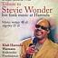 Tribute to Stevie Wonder - live funk music at Harenda