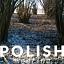POLISH MEETING