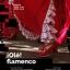 ¡Olé! Flamenco - warsztaty dla dzieci w DK kadr