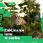 Zaklinanie lasu w słoiku - warsztaty w DK Kadr