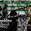 Celtic Folk Night - Etnostation, The  Tamblers