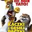 """""""Kaczki z gęsiej paczki"""" - Nasze Kino"""