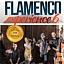 Flamenco Experience 6