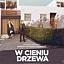 """""""W cieniu drzewa"""" Seans z Cyklu Kino Konesera Kino Helios Tomaszów Mazowiecki."""