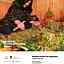 Roślinna podróż do Dagestanu