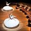 Ethno Jazz Festival: Wirujący Derwisze - Noureddine Khourchida & The Whirling Dervishes Of Syria