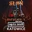 Słoń - Katowice