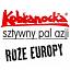 Kobranocka // Róże Europy // Sztywny Pal Azji