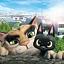 Czarny kot Rudolf - Nieznane Oblicza Japonii