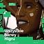 Wszystkie barwy Nigru