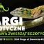 ZooEgzotyka - 2 czerwca 2019