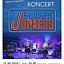 Koncert zespołu Blues Junkers
