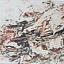 Przyrodą malowane  – wystawa obrazów Józefa Józaka