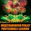 Damy Ognia - Międzynarodowe Pokazy Pirotechniki i Laserów