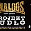 The Analogs: Projekt Pudło - elektrycznie i akustycznie