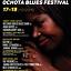 X International Ochota Blues Festival