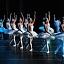 Jezioro łabędzie - Royal Russian Ballet