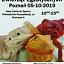 Świat Egzotyki - Poznańskie Targi Terrarystyczne i Botaniczne | Giełda i Wystawa Zwierząt Egzotycznych