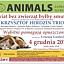 Koncert charytatywny na rzecz zwierząt. Organizator: ANIMALS Towarzystwo Pomocy Zwierzętom