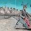 Korpo-jeleń na rowerze, czyli wystawa i XXXVII Aukcja Nowej Sztuki