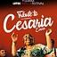 Gdańsk Lotos Siesta Festival Tribute to Cesaria Evora