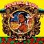 Koncert zespołu Caravana Banda
