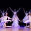 Balet Rajmonda