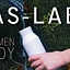 Las- Lab. Fenomen wody