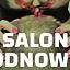 Salon Odnowy