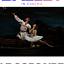 """""""Korsarz"""" - retransmisja baletu z Teatru Bolszoj w Moskwie - Nasze Kino"""