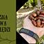 Leśna kawa z żołędzi z Łukaszem Tulejem