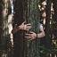 Kultura i Natura. Shinrin Yoku w Kampinoskim Parku Narodowym