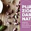 Niezawodny ziołowy relaks: Pijalnia Ziół Dary Natury