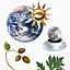 Niedzielne Warsztaty Rodzinne: Atlas roślin