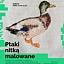 Ptaki nitką malowane  - warsztaty dla młodzieży i dorosłych