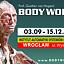 Wystawa Body Worlds Vital