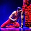 Carme(n)love oraz Intercepted/Przechwycone | Kielecki Teatr Tańca