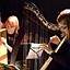 Duet Harf Celtyckich