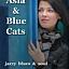 Blue Cats feat. Asia Kwaśnik